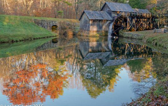 Fall Cross Country