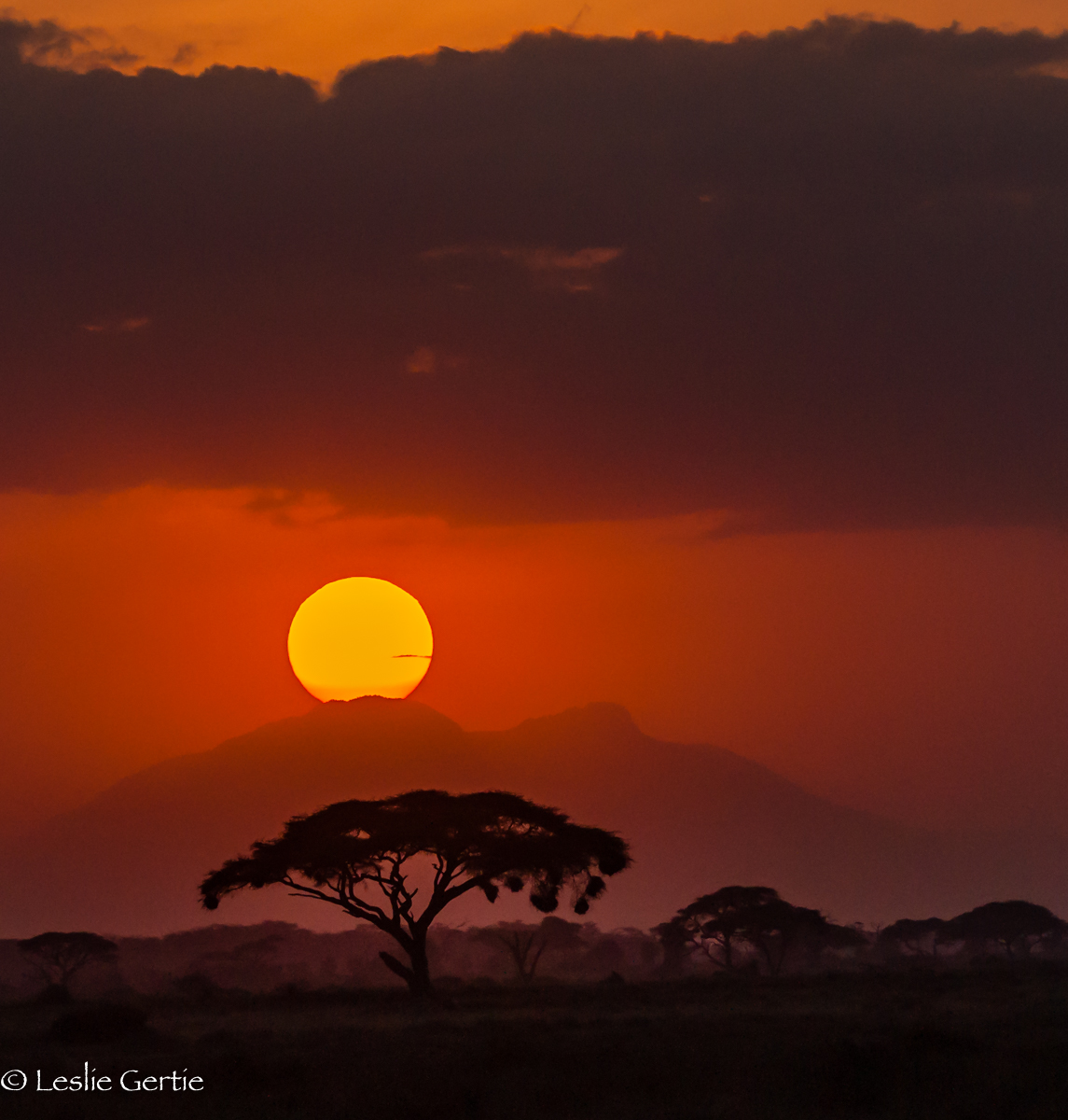 African Sunset-6615