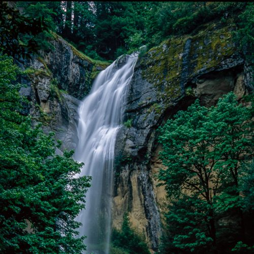Golden Falls-185-31252-11