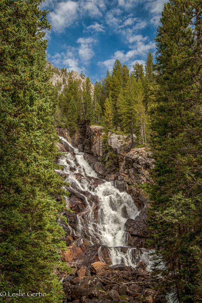 Hidden Falls @ Jenny Lake-5416