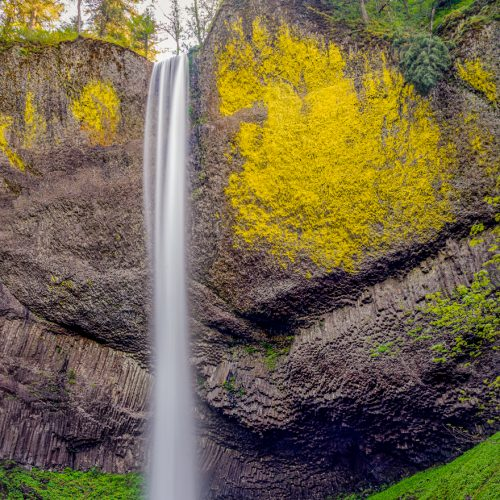 Latourelle Falls-566