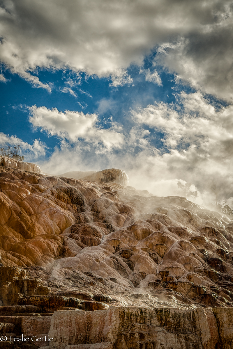 Mammoth Hot Springs-4945
