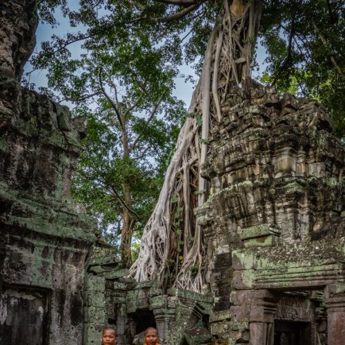 Monks @ Ta Prohm-9387