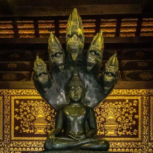 Naga Buddha-1503
