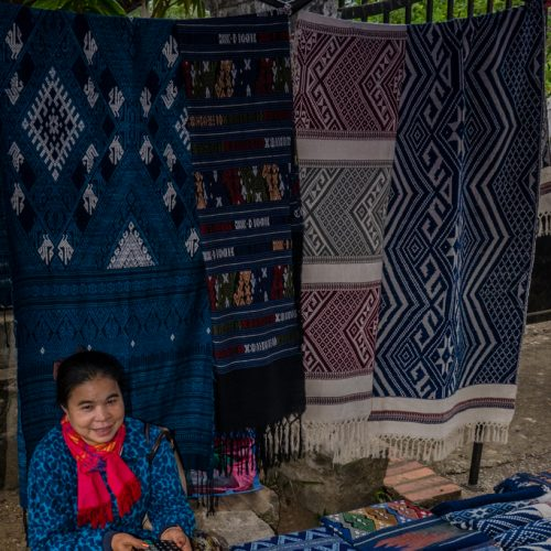 Open Air Market in Laos-935