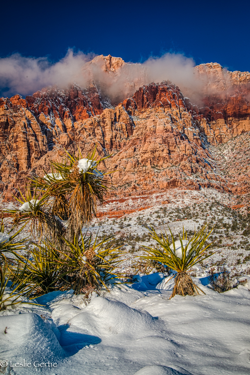 Red Rock Canyon Snow-50