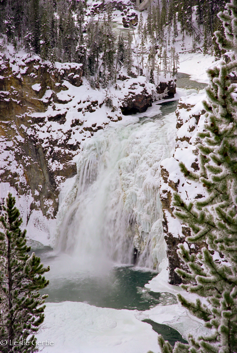 Upper Yellowstone Falls-185-73