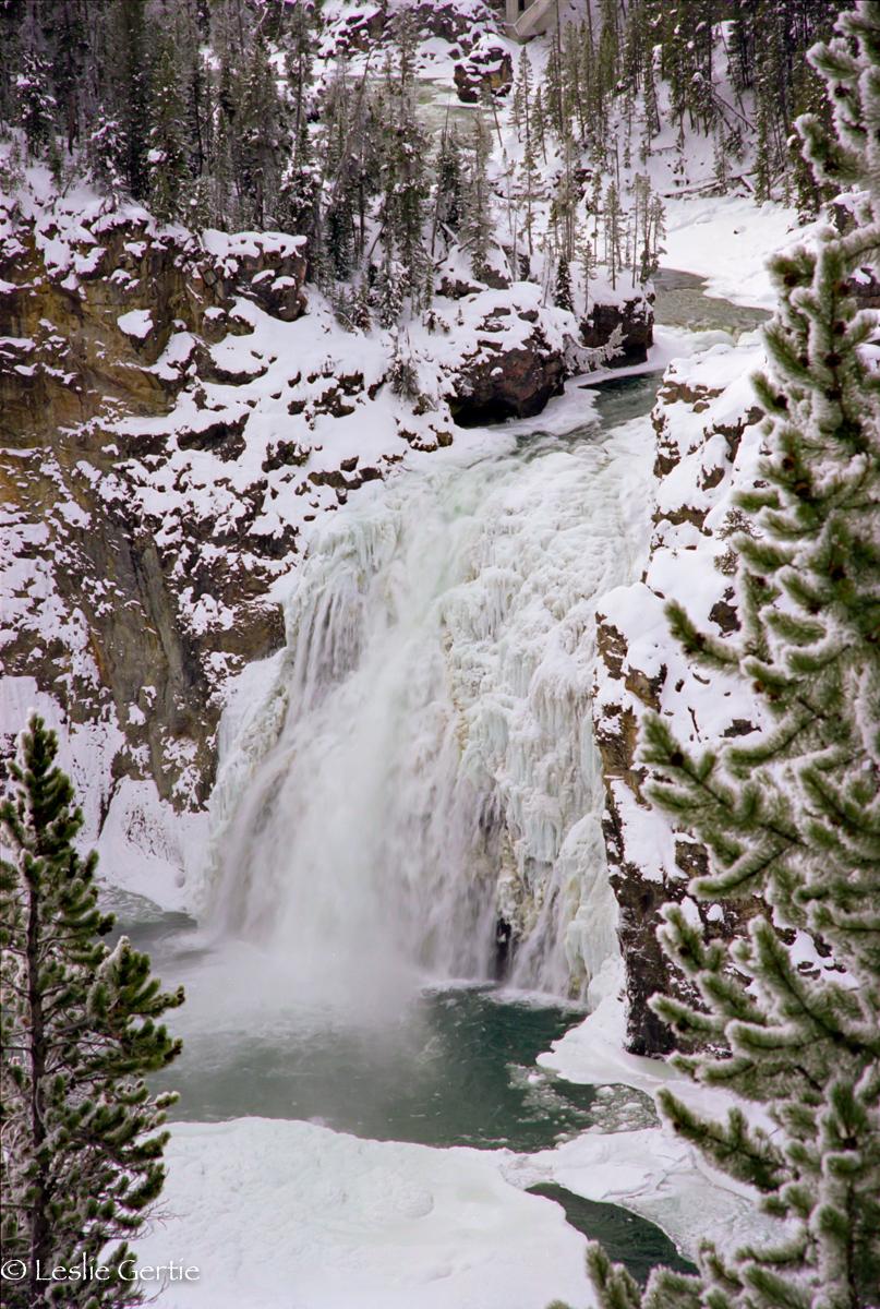 Upper Yellowstone Falls-185-73