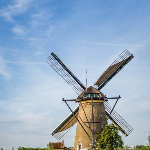 Kinderdijk-1365