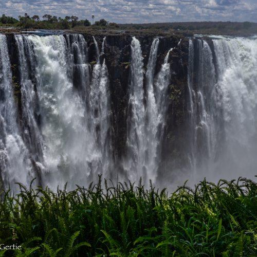 Victoria Falls-3951
