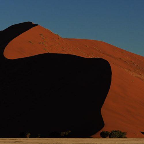 Red Dune-6252